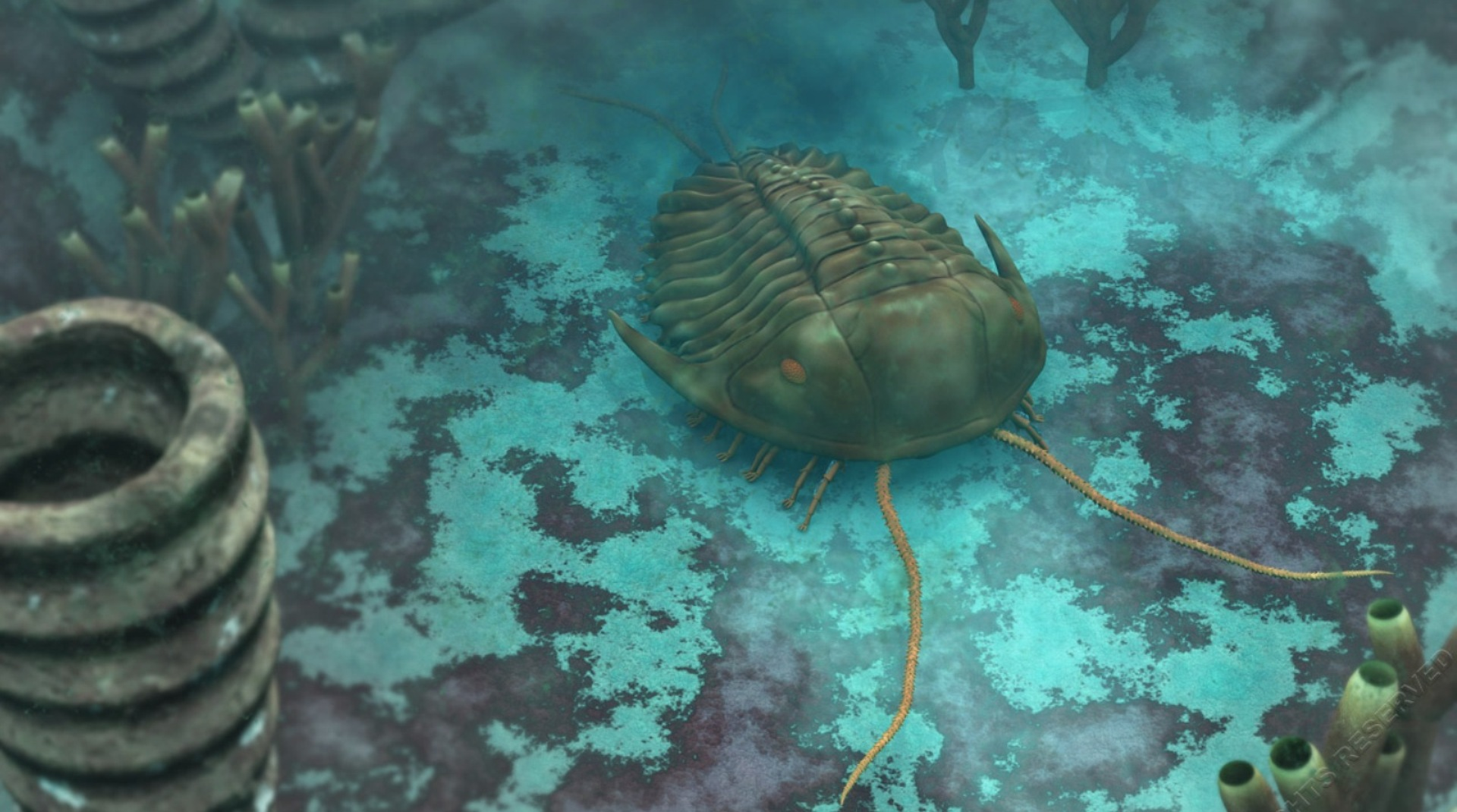 Netxplica :: Ciências Naturais, Biologia e Geologia