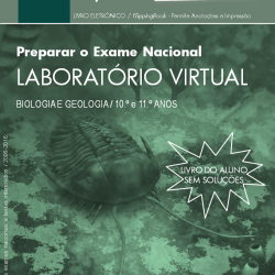 Laboratório Virtual (aluno)